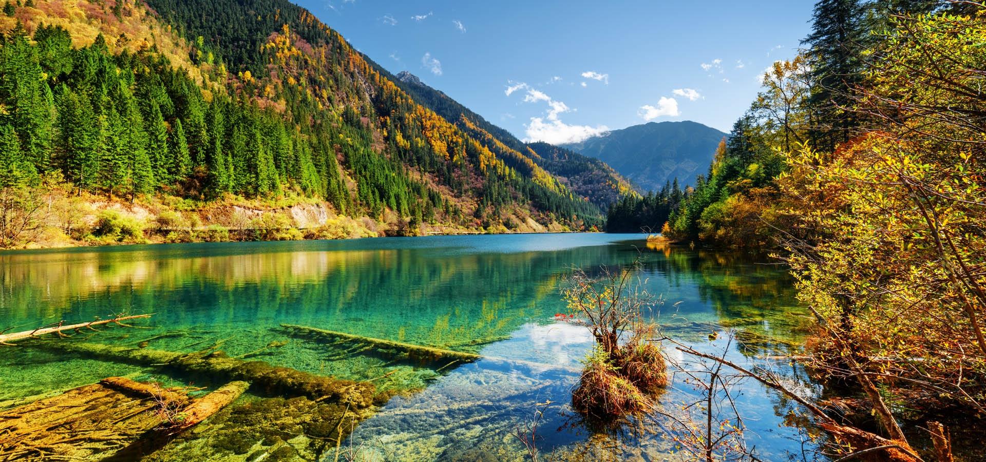 南美洲哥伦比亚_中国 | 野去自然旅行
